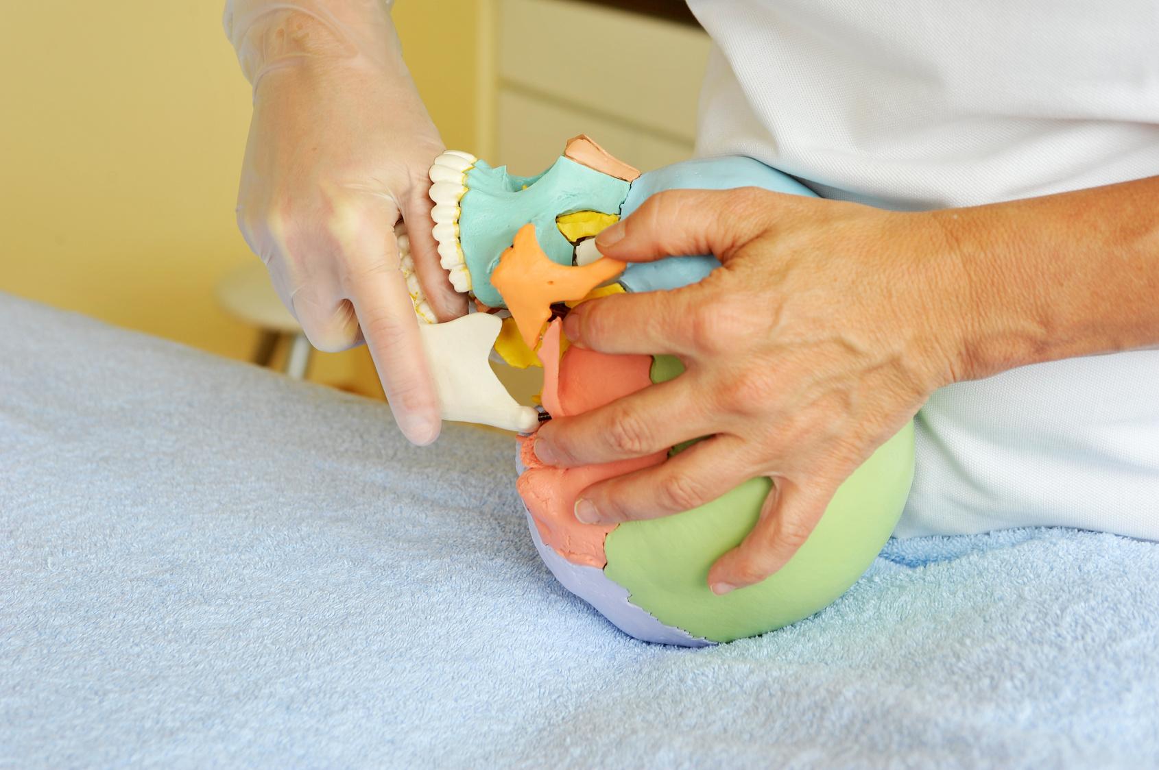 Kurs - Temporomandibular joints – diagnostics and therapy