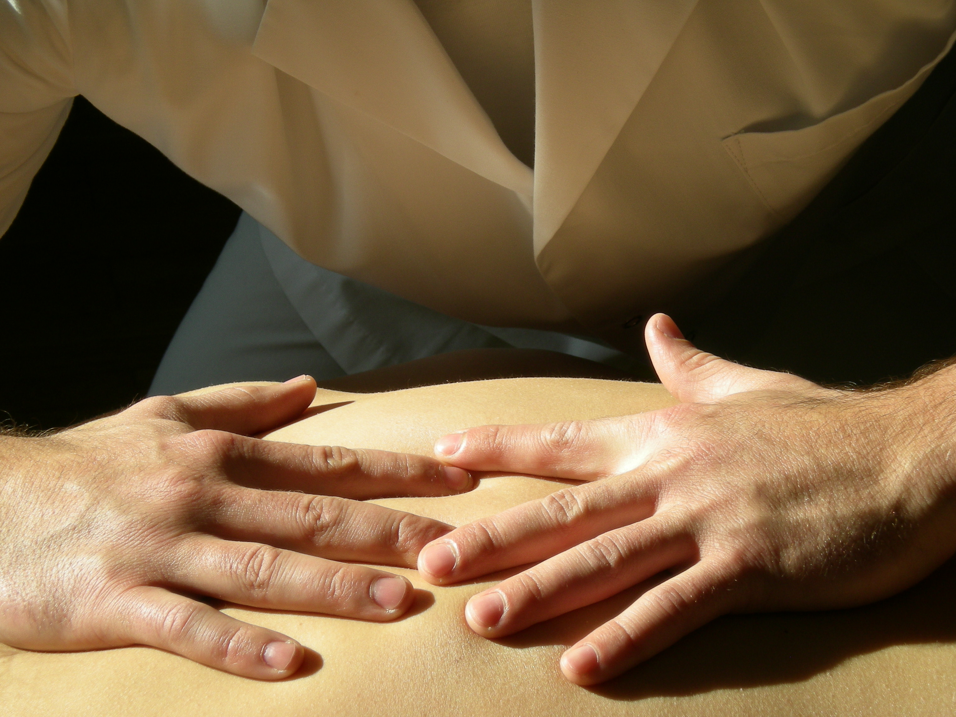Kurs - ANATOMIA PALPACYJNA  i modele dysfunkcji osteopatycznych