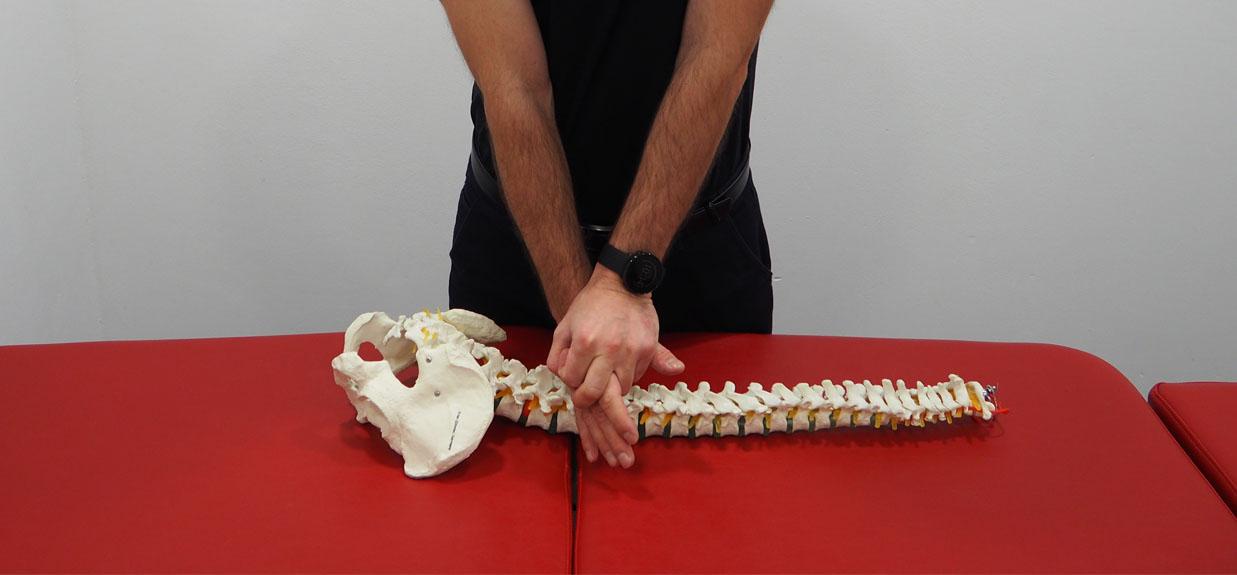 Kurs - Podstawy terapii manualnej z wprowadzeniem  do technik manipulacji